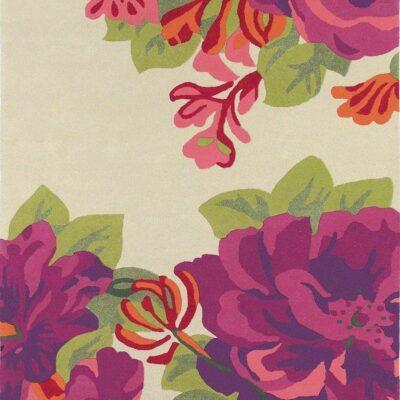 midsummer-rose-crimson.jpg
